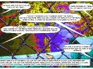 metropoles-page_12